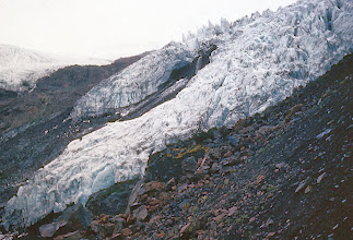 Photo: 32. Advancing Colman Glacier on Mt. Baker. This glacier advanced 100 feet in the winter of 1965-66. It is still advancing. Mt. Baker has more glacier, pound for pound, than any other mountain in the North Cascades. Its two mile high ice gleams directly above range forests only 700 feet above sea level. Much of this forest unfortunately has been logged already.