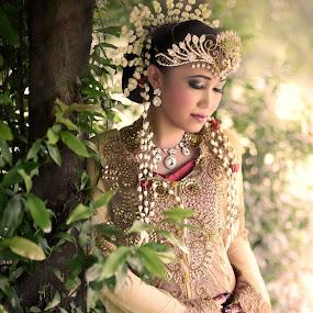 Malay Wedding Bride by Mohd hafizan Ilias - Wedding Bride ( reception, malaywedding, wed, malay, malaysia )