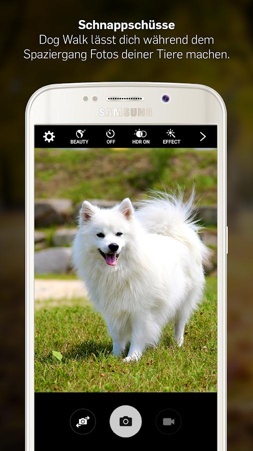 dog walk spazieren mit hund android apps auf google play. Black Bedroom Furniture Sets. Home Design Ideas