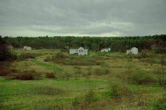 Photo: Meadow