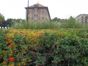 Photo: Much of the factory - including buildings such as this one decorated in tiles of the cocoa flower - is actually on a small island in the Marne.