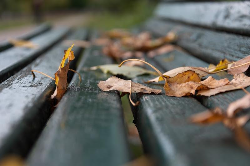 lay down on the bench di F.O.