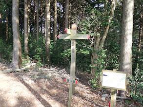 稜線に合流(左の京ヶ峯へ)