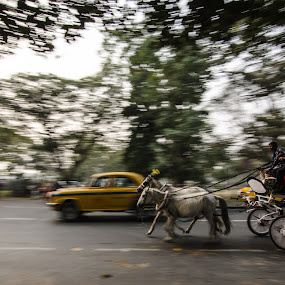 Transformation of Transportation by Prabir Adhikary - Transportation Other ( contrast, technology & animal power, transformation of transportation with time, car & cart in motion, horse cart & car, passenger car & cart,  )