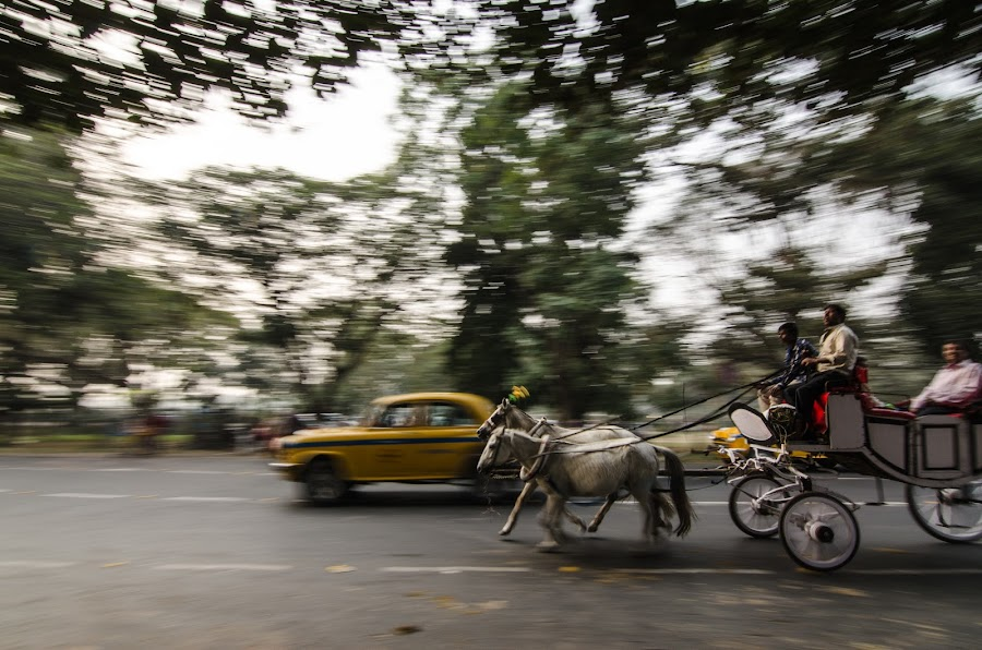 Transformation of Transportation by Prabir Adhikary - Transportation Other ( contrast, technology & animal power, transformation of transportation with time, car & cart in motion, horse cart & car, passenger car & cart,  )