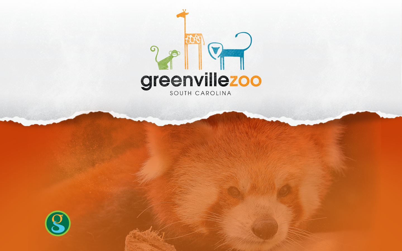 Greenville zoo - No slip grip hair ties