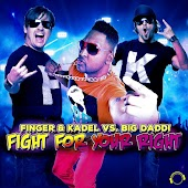 Fight for Your Right (Single Edit)
