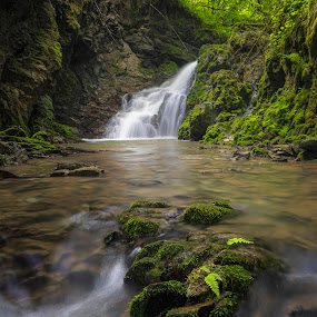 Persistence  by Bor Rojnik - Landscapes Waterscapes ( slovenia, places, reflection, creek, nature, waterfall, long exposure, day, water, upper carniola, landscape )