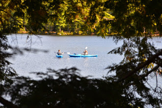 Photo: View of kayakers through trees at Lowell Lake State Park by Bill Steele