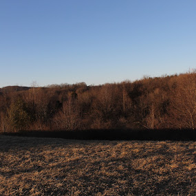 field  by Matthew Donathan - Landscapes Mountains & Hills ( landscapes, south, canon eos, virginia )