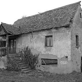 Left alone by Andrea Tomašević - Buildings & Architecture Decaying & Abandoned ( home, grass, house, alone, abandoned,  )
