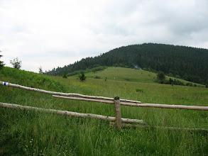 Photo: 07.Polana między Gorcem Kamienickim (1160 m) i Gorcem (1228 m).