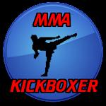 Learn MMA UFC Kickboxer