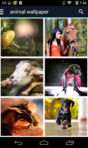 玩免費個人化APP|下載动物壁纸 app不用錢|硬是要APP