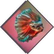Betta Fish Species