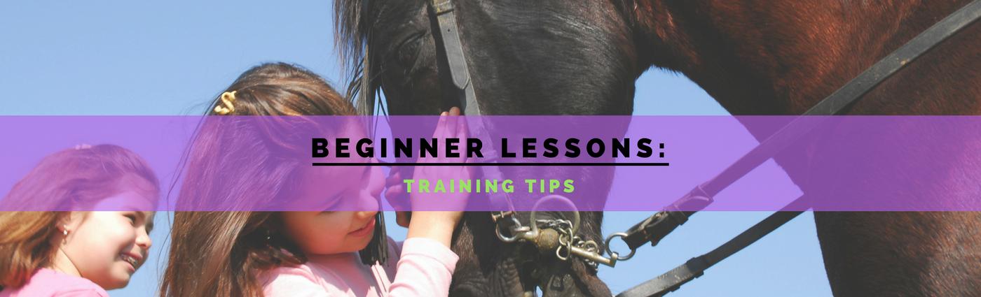 beginner-lessons-banner
