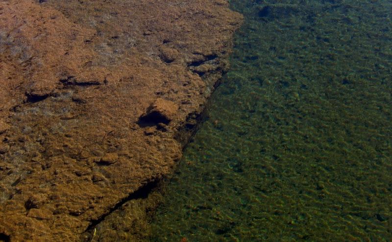 Trasparenze a pelo d'acqua  di Rodema