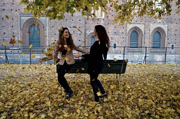 Millemila foglie gialle volano di itsimonac