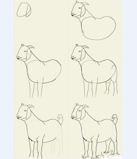How to Draw Animals By Step - náhled