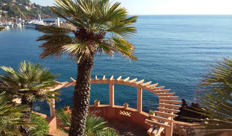 Villa en bord de mer avec terrasse Theoule-sur-mer