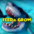 Feed and Grow : Fish Guide