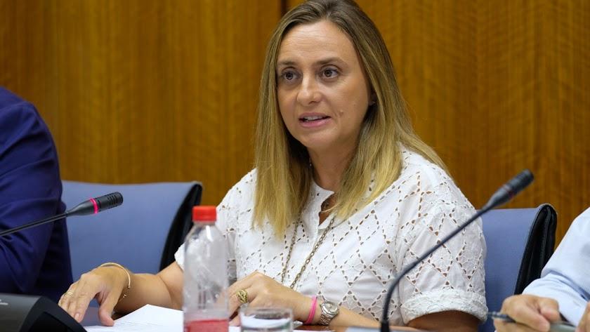 La consejera Marifrán Carazo en la Comisión de Fomento