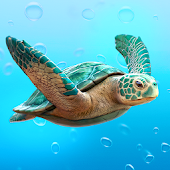 WikiTurtle