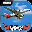 Flight Simulator Paris 2015 icon