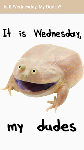 Is It Wednesday, My Dudes? - náhled