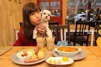 台南項圈工場主題寵物餐廳