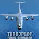 Turboprop Flight Simulator 3D (game)