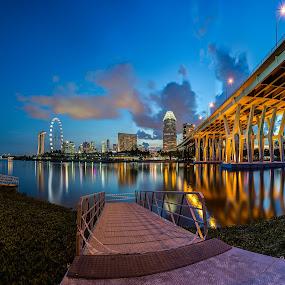 Bay East Gardens blue hour by Zexsen Xie - City,  Street & Park  City Parks