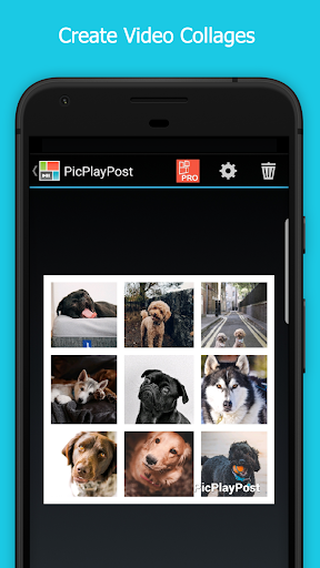 Image of PicPlayPost - Photo & Video Collage Maker Editor 3.11.0_g_g 1