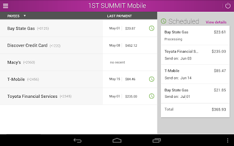 1ST SUMMIT BANK screenshot 8
