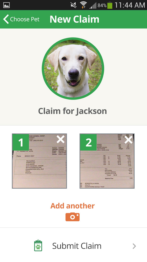 Healthy Paws Pet Insurance App- screenshot