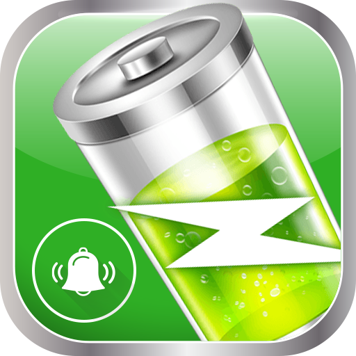 Full Battery & Theft Alarm