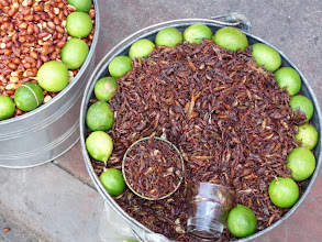 Photo: Chapulines (grasshoppers) and lime, Puebla