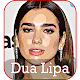 Dua Lipa Songs 2108 (app)