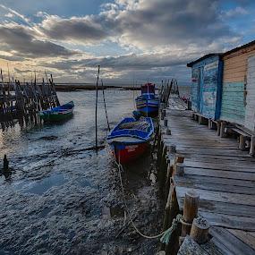 by João Freire - Landscapes Waterscapes ( carrasqueira, boat, portugal, landscape, ancient boat harbor,  )