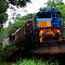 Kuranda Scenic Rail crossing Frehwater Creek.jpg