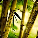Bamboo Live Wallpaper icon