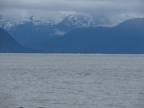 Photo: Broken bits of glacial ice floating in Frederick Sound.