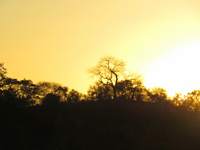 Photo: Kruger sunset