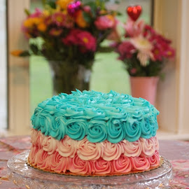 Colorful cake by Brenda Shoemake - Food & Drink Candy & Dessert