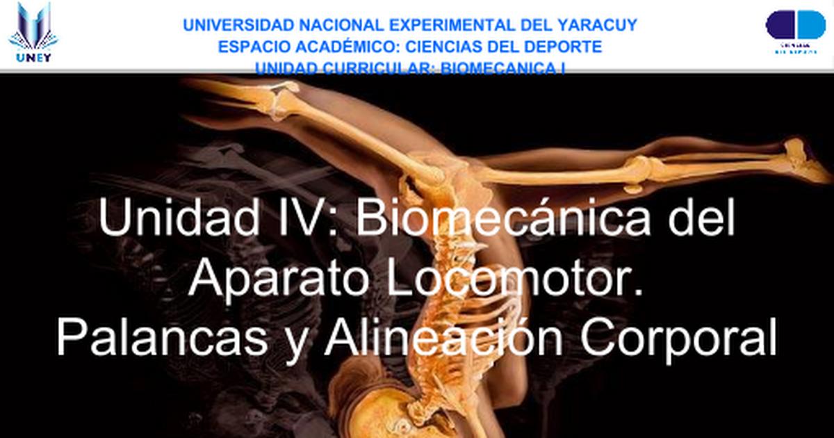 Unidad IV_ Biomecanica I_alineacion corporal+palancas.ppt - Google ...
