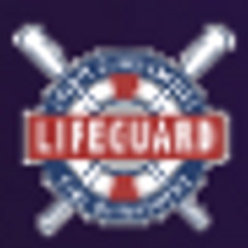 LACO LIfeguard Hiring Widget