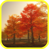 Colorful Autumn Live Wallpaper