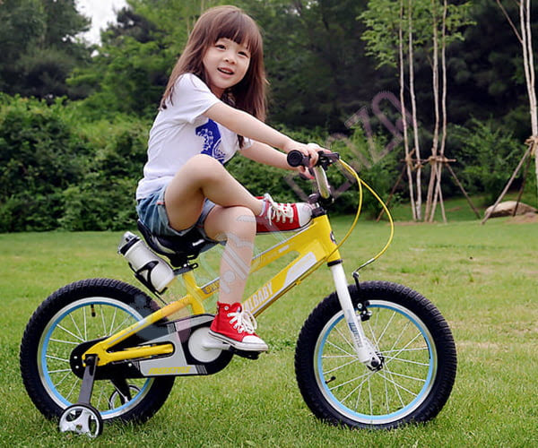 Xe đạp RoyalBaby RB-17 7