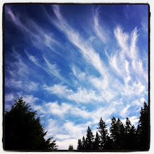 Photo: Cloud painted sky on a sunny afternoon #intercer #clouds #sky #cloud #blueskys #sunshine #skysnappers #nature #blue #white #TAGSTAGRAM .COM #light #skylovers #weather #cloudy #outside #sun #instahub #sunny #iskygram #beauty #trees #beautiful - via Instagram, http://instagr.am/p/PH6K-bpfuq/