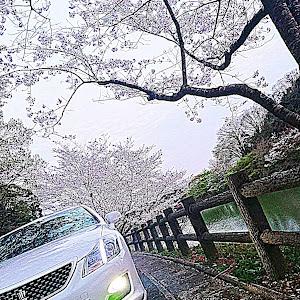 クラウンアスリート GRS200のカスタム事例画像 niyan 【Jun Style】さんの2020年04月03日20:20の投稿